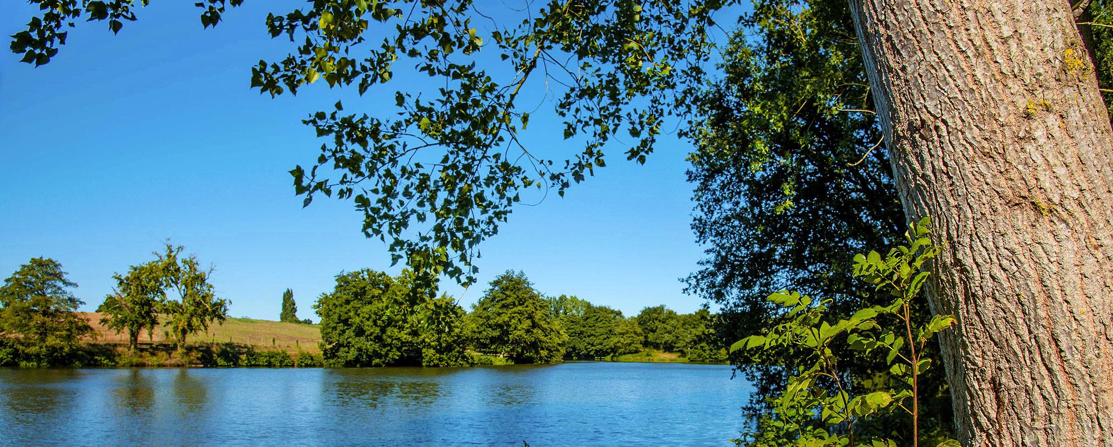 Bandeau – Lac L'Oie